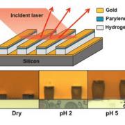 hydrogel sensor