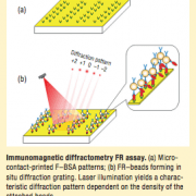 immunomagnetic diffractometry diagram